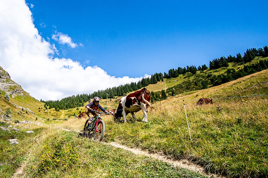 Mountain-biking-in-Morzine-Portes-du-Soleil